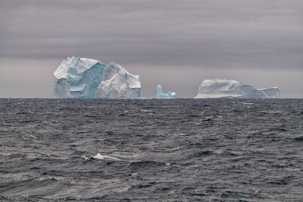 Icebergs in the Drake Passage