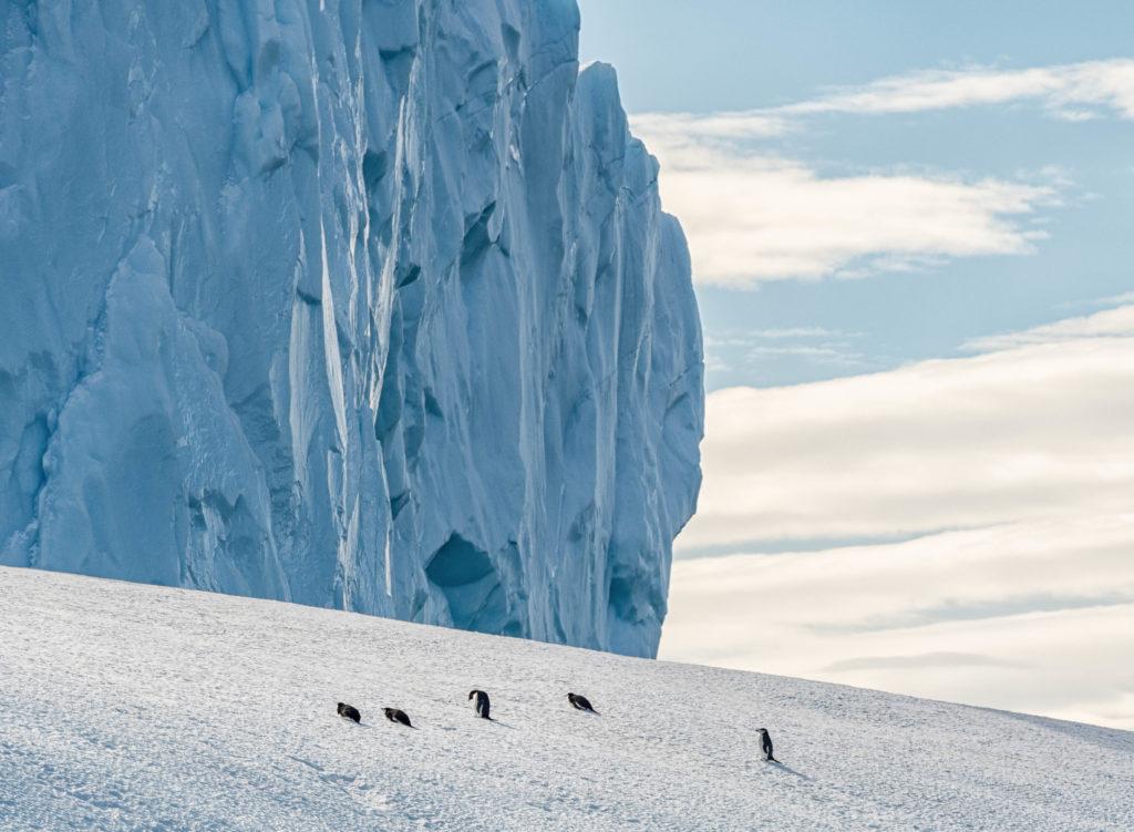Iceberg near Spert Island