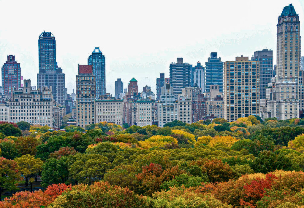 View of Central Park and Manhattan