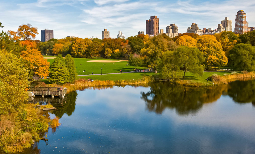 View from Belvedere Castle - Central Park