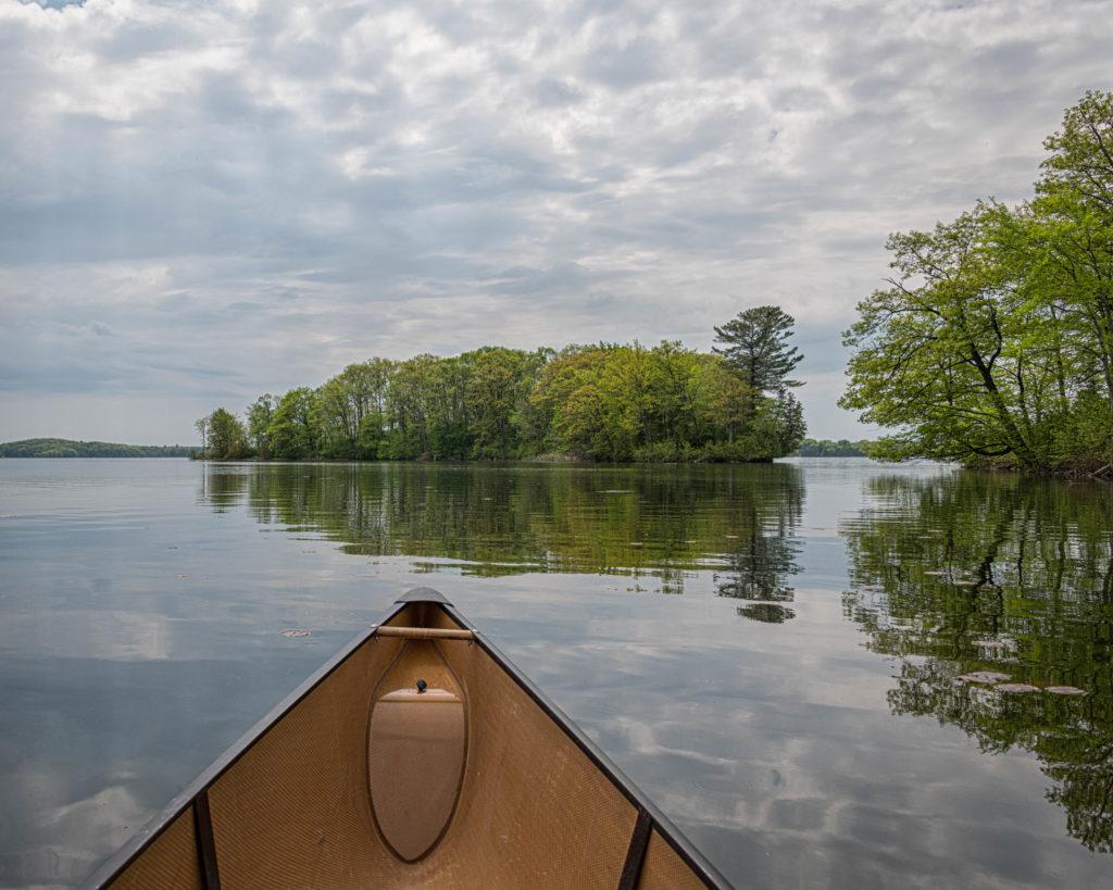 Wetlands - Buckhorn Lake